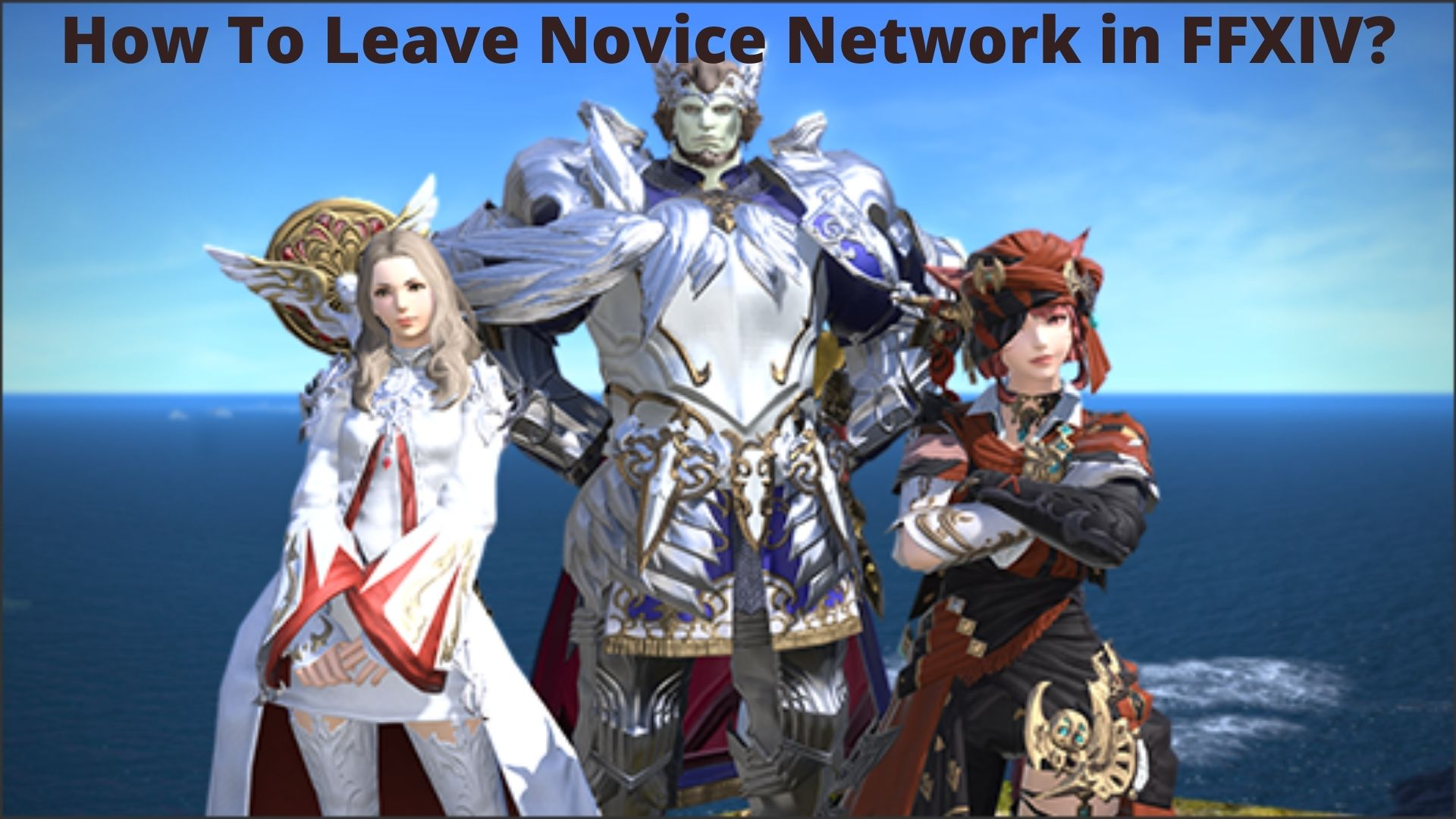 How To Leave Novice Network in FFXIV