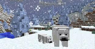 What Do Polar Bears Eat In Minecraft